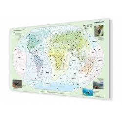 Świat - krainy zoograficzne160x110cm. Mapa do wpinania.