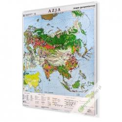 Azja Gospodarcza 146x196cm. Mapa ścienna.