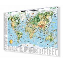 Świat w obrazkach dla dzieci 146x98cm. Mapa magnetyczna.