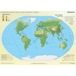 Świat rozmieszczenie ludności - ekumena, subekumena i anekumena 160x120cm. Mapa ścienna.