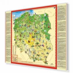 Polska Młodego Odkrywcy 105x68cm. Mapa w ramie aluminiowej.