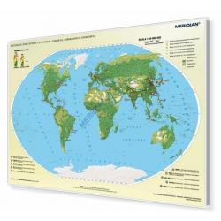 Świat rozmieszczenie ludności - ekumena, subekumena i anekumena 160x120cm. Mapa magnetyczna.